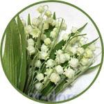 Цветы для декора - ландыши купить