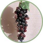 Виноград, ягодки для декора