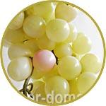 """Виноград """"Шардоне"""", гроздь 20 см"""