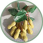 Фрукты для декора, земляной орех арахис